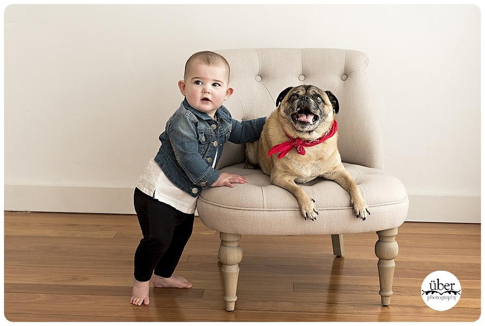 sydney-pet-photography.jpg