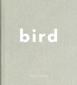 Horn_Bird_0.jpg