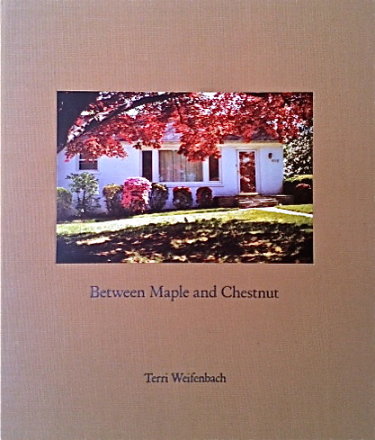 Terri Weifenbach / Between Maple and Chestnut