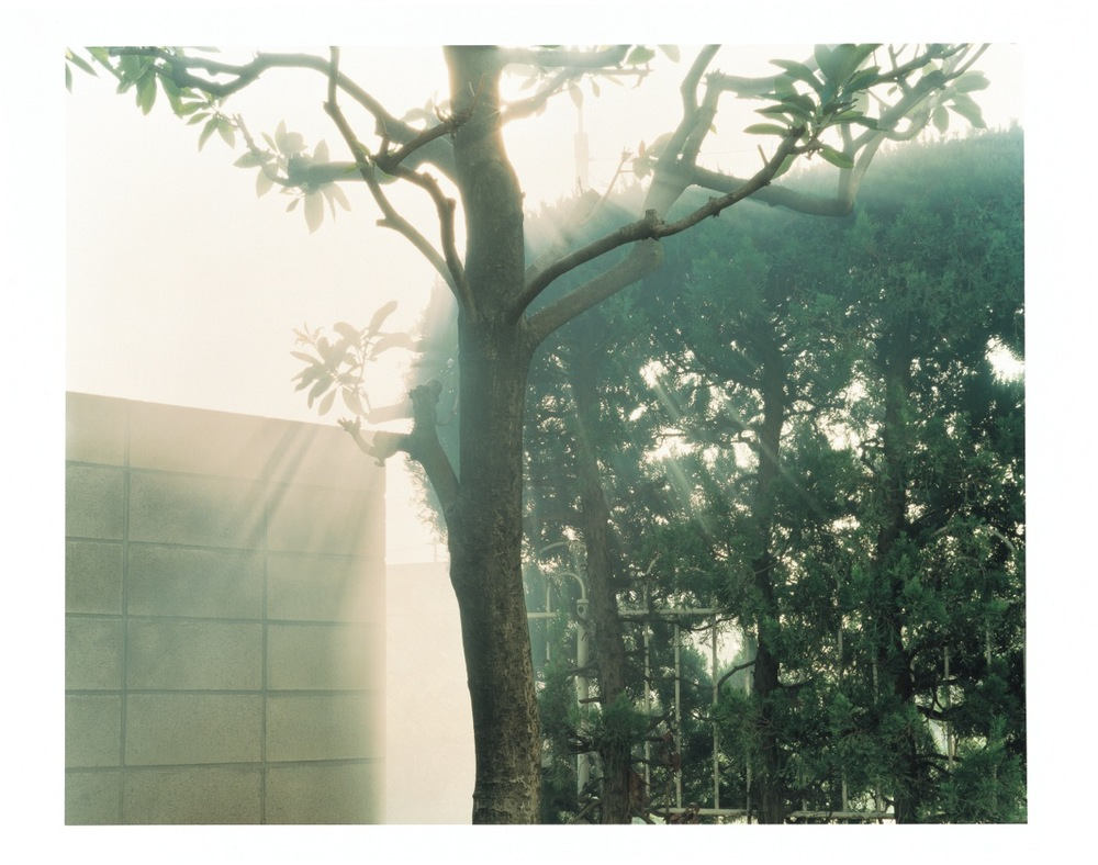 ©Yuji Hamada, Courtesy of the artist and Photo Gallery International