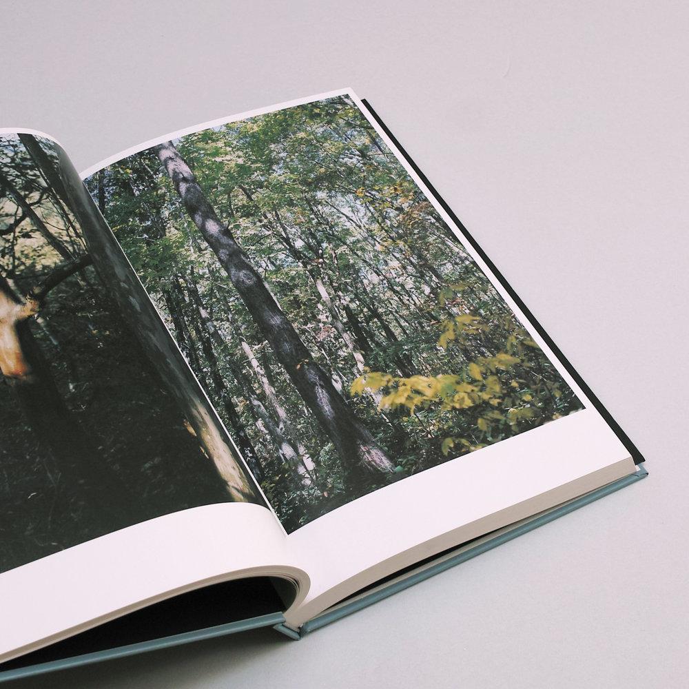 その森の子供05.jpg