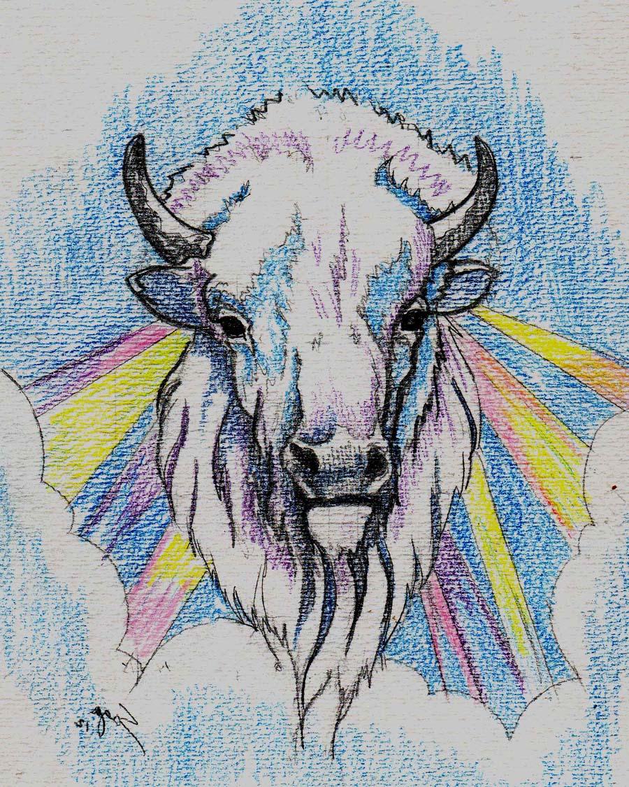 white buffalo - front copy.jpg