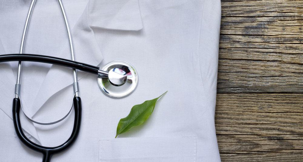 leaf dr image.jpg