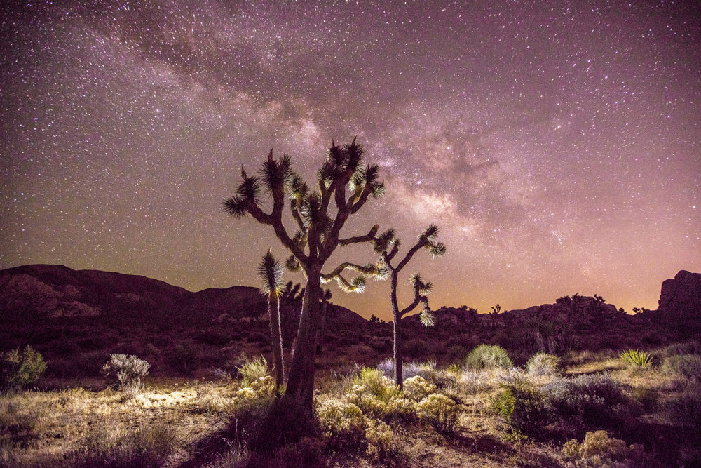 Learn Astrophotography in Joshua Tree  - July 21-22, 2017 - Sold Out