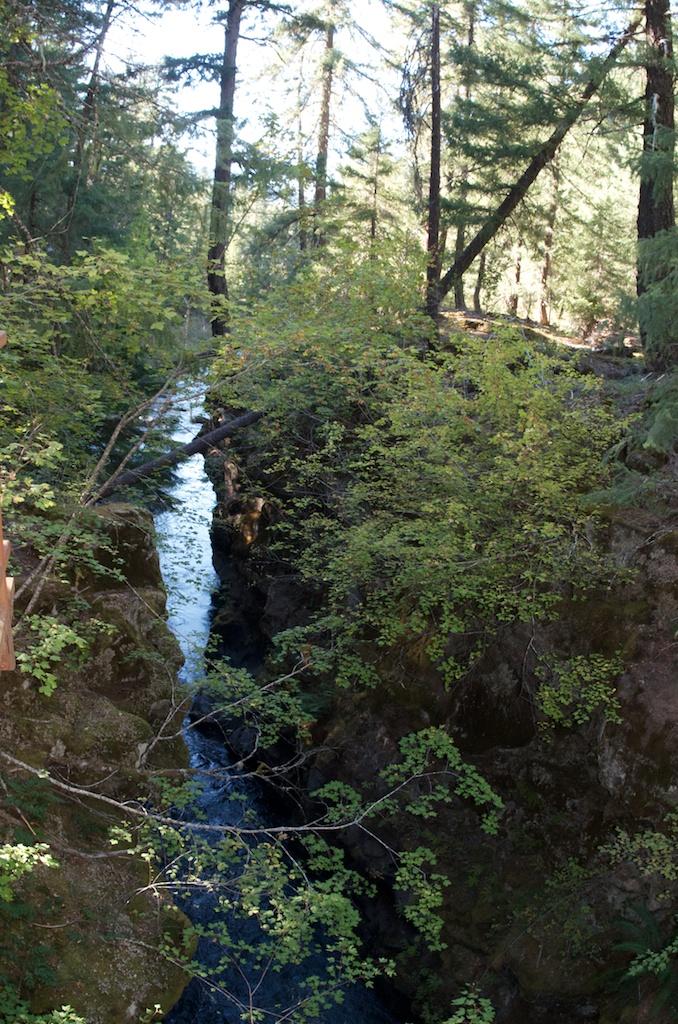 CARSON_LEH_SPLY_MFG crater lake-redwoods 16.jpg