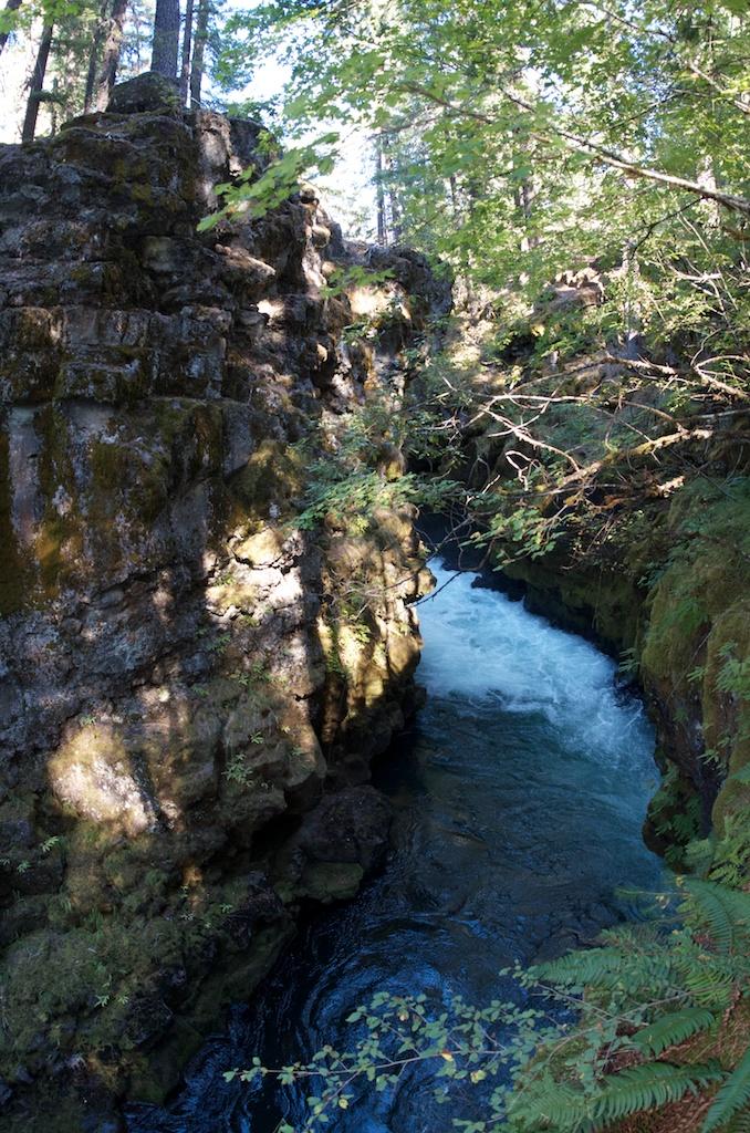 CARSON_LEH_SPLY_MFG crater lake-redwoods 17.jpg