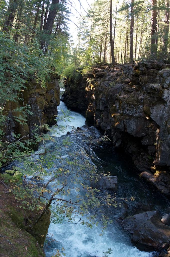 CARSON_LEH_SPLY_MFG crater lake-redwoods 18.jpg