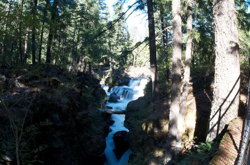 CARSON_LEH_SPLY_MFG crater lake-redwoods 19.jpg