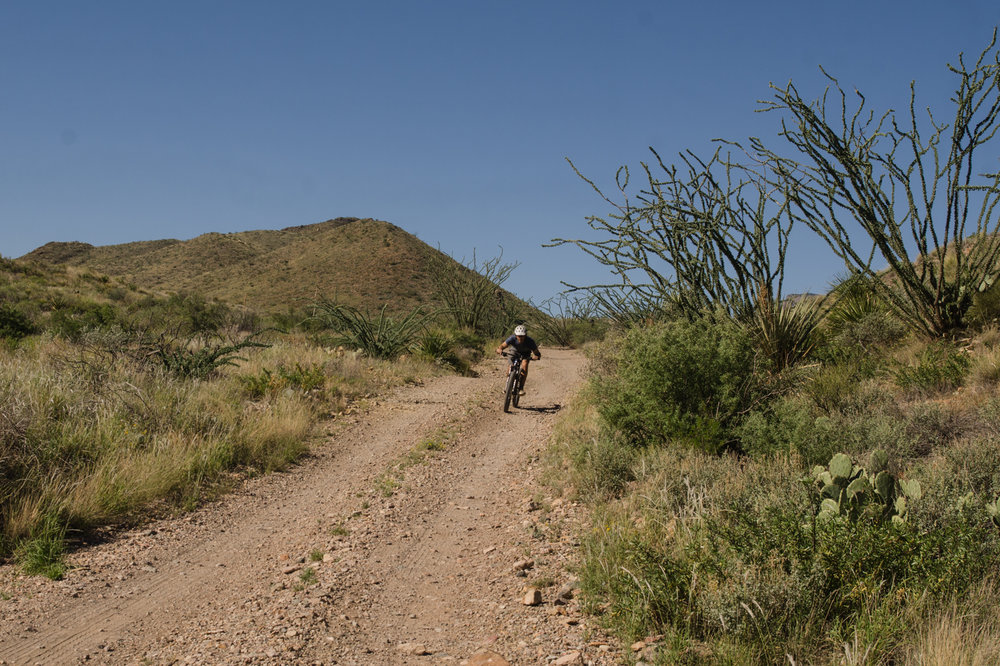 Mountain biking in big bend national park-leh cycling goods-22.jpg