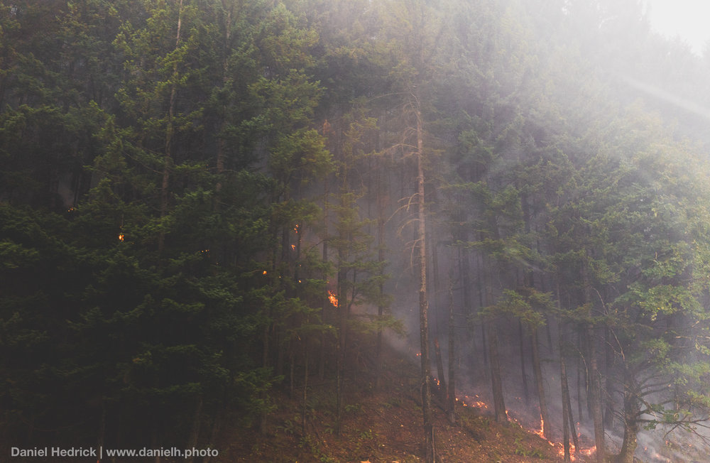 columbia-river-gorge-eagle-creek-fire_daniel-hedrick.jpg