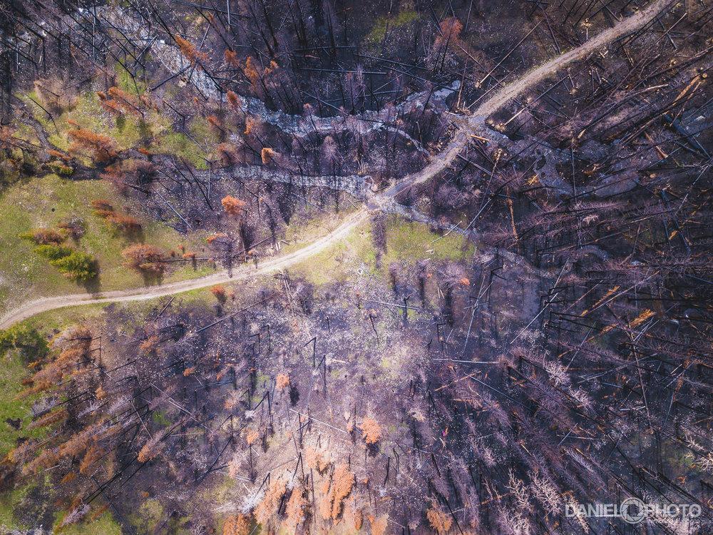 daniel-hedrick-camping-memorial-day-0170.jpg
