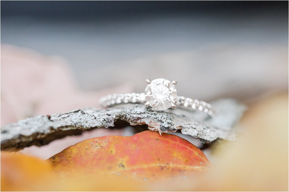relaxed-autumn-engagement-photos-at-hudson-mills-metropark-in-dexter-mi-by-courtney-carolyn-photography_0017.jpg