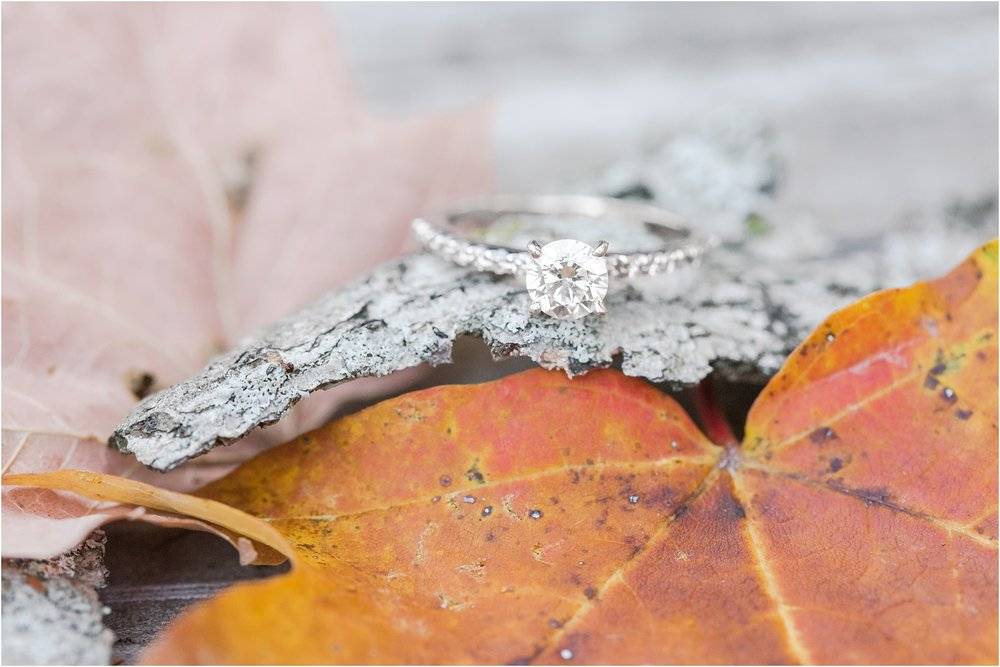 relaxed-autumn-engagement-photos-at-hudson-mills-metropark-in-dexter-mi-by-courtney-carolyn-photography_0027.jpg