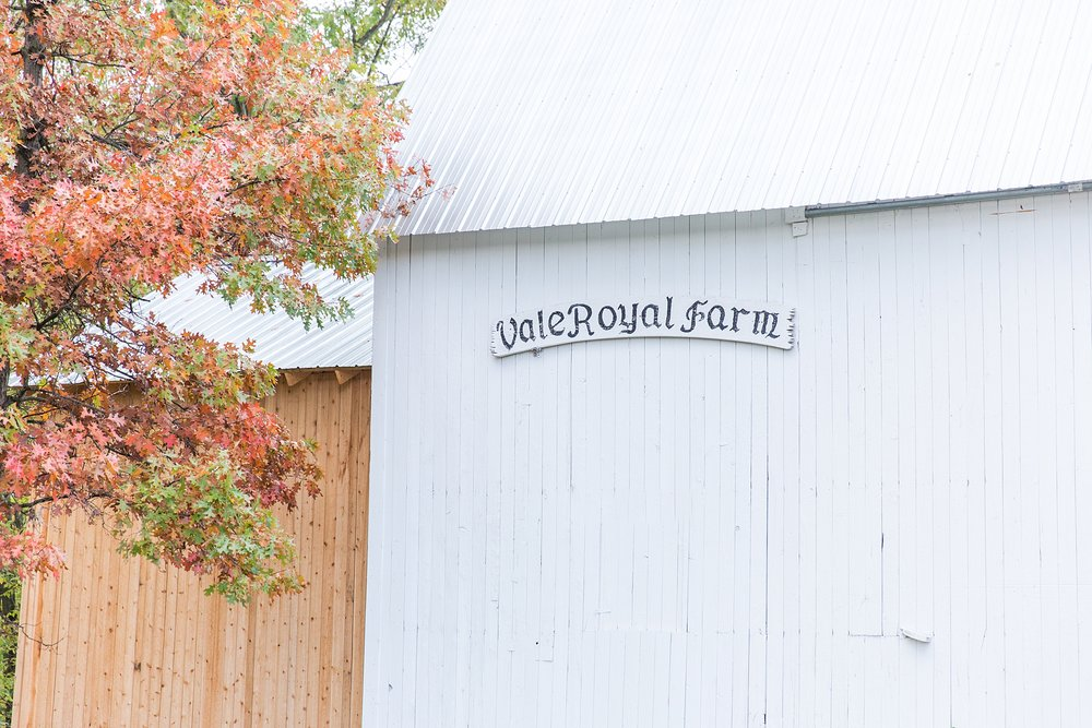 rustic-whimsical-wedding-photos-the-vale-royal-barn-in-fenton-michigan-by-courtney-carolyn-photography_0010.jpg