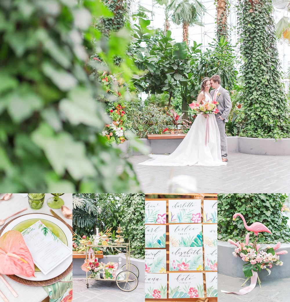 colorful-tropical-wedding-photos-at-the-crystal-gardens-in-chicago-illinois-by-courtney-carolyn-photography_0050.jpg