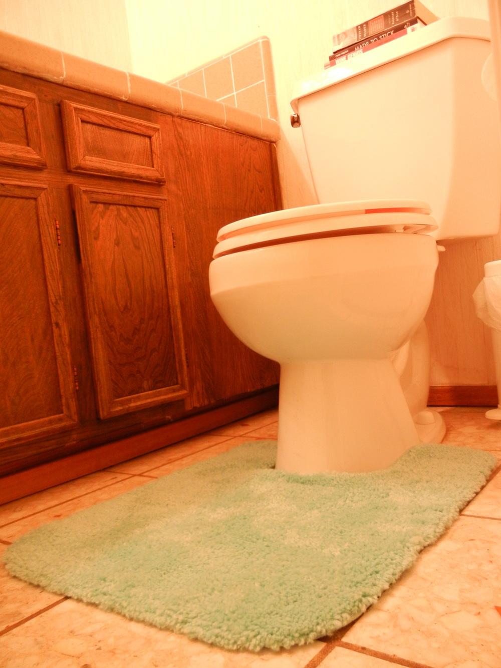 week 2: decorate the downstairs bathroom