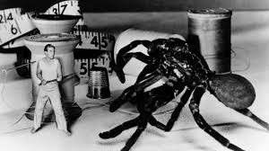 Incredible Shrinking Man footage