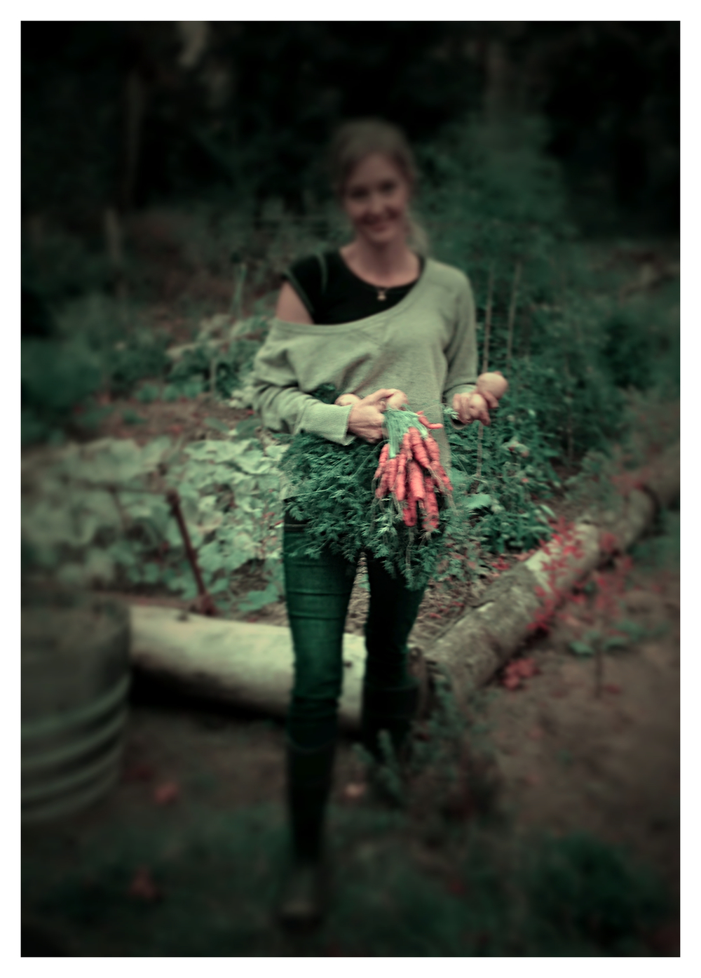 Carrots and potatoes for dinner -- as it is and so very grateful for it (and look at that bounty of garden behind me! Wowza!)