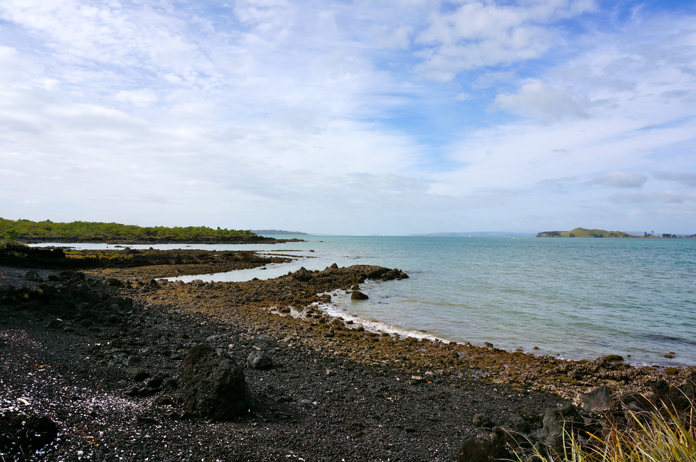 on the shores of rangitoto island, new zealand