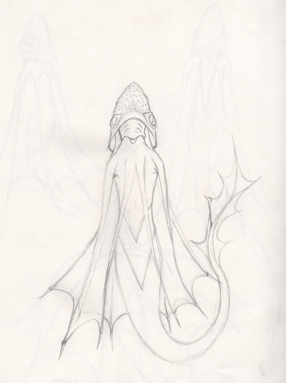 squide front.jpg