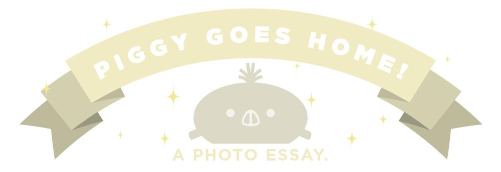 piggy-banner.jpg