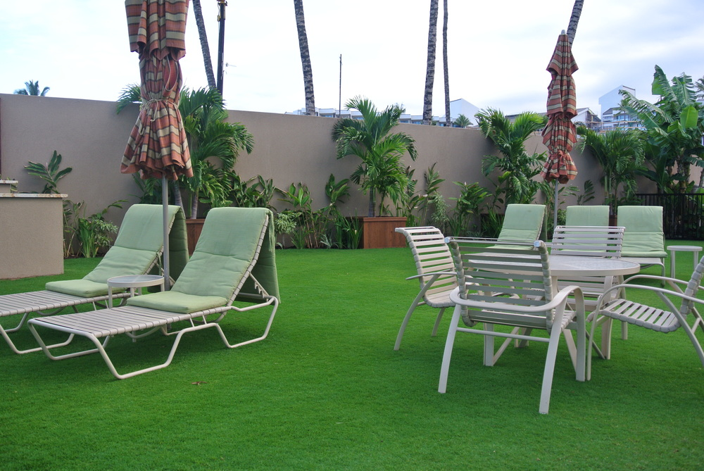 Lounge Chairs at Lower Pool