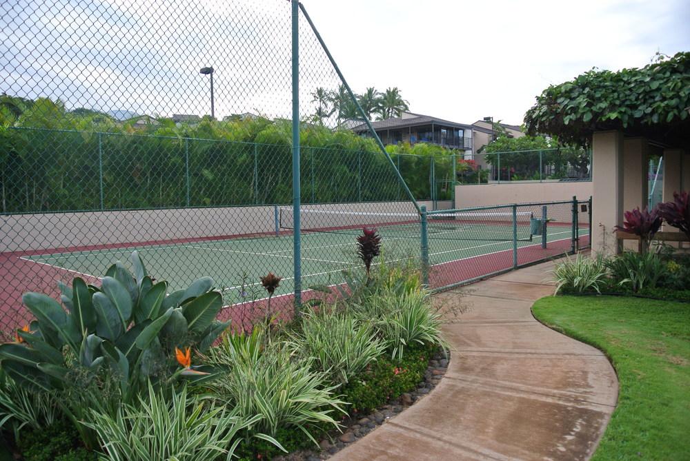 Paddle Ball Court