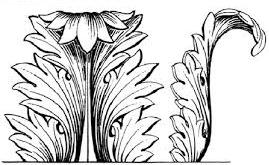 accanthus leaf (2).jpg