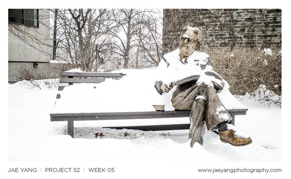 p52_week05.jpg