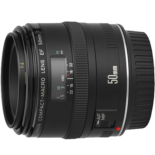 Canon EF 50mm Macro