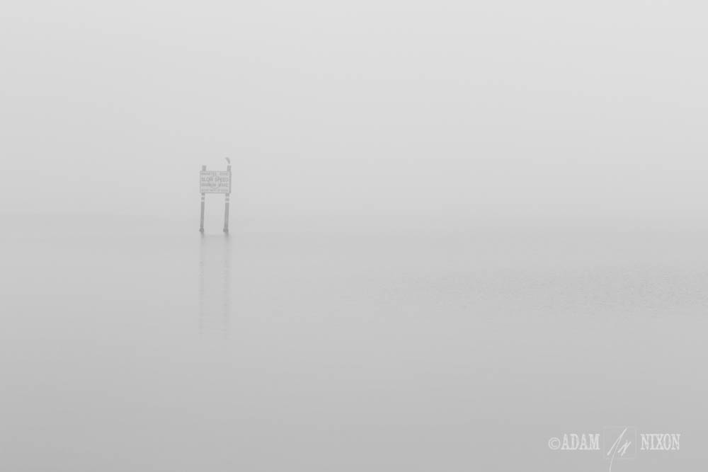Foggy Day on the Indian River