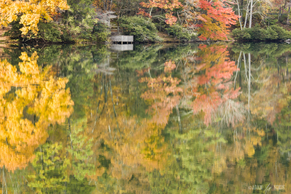 Wooden deck over looking a lake in Autumn