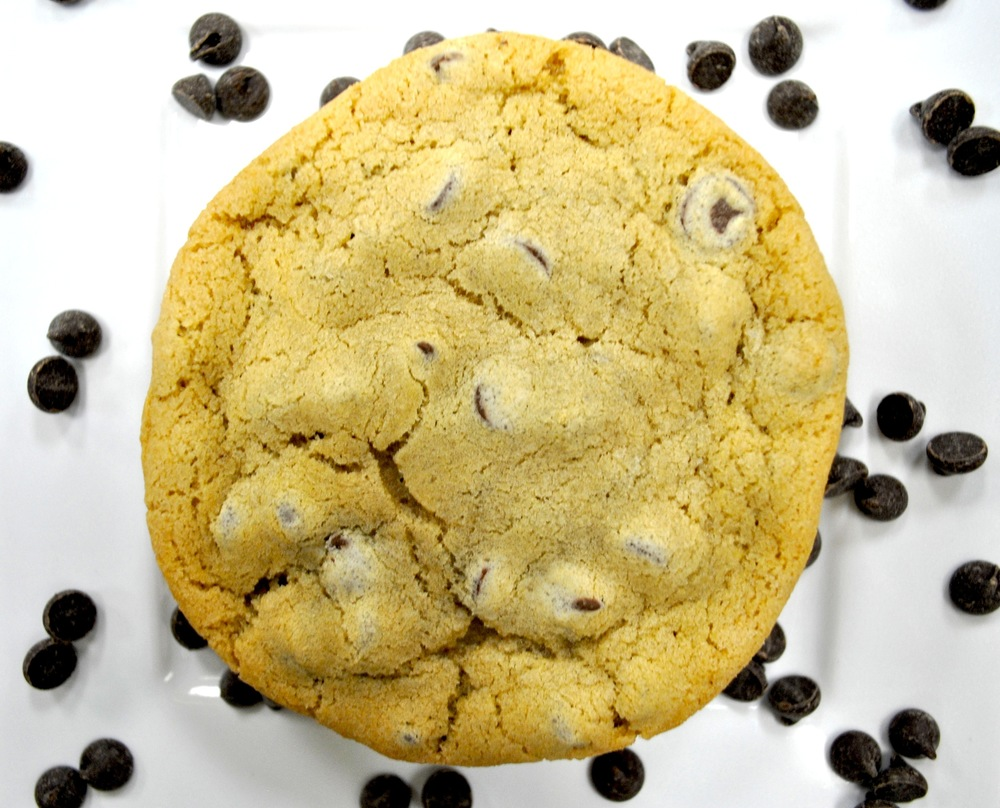 ChocolateChip1.JPG
