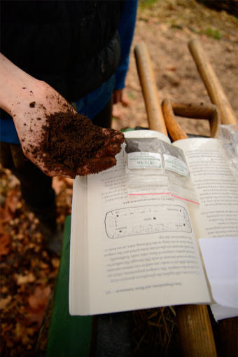 We make a small 'nest' of soil to tuck about 1 teaspoon of one of the preps into. Then, using a stick, we drill diagonal holes into the pile where we reach in and deposit it, toward the center of the pile.