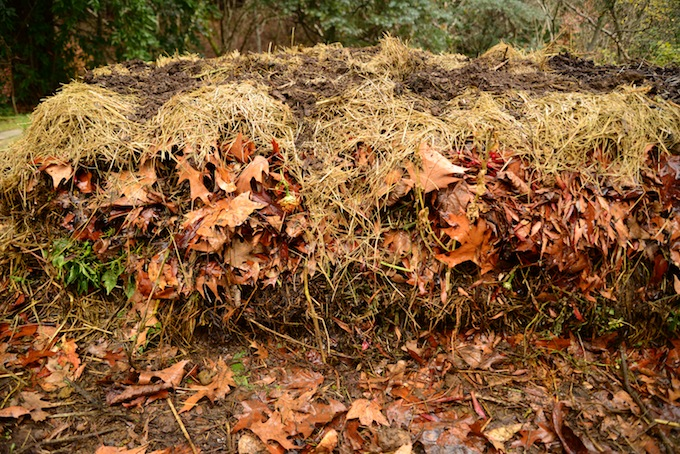 A compost pile entering its resting stage.