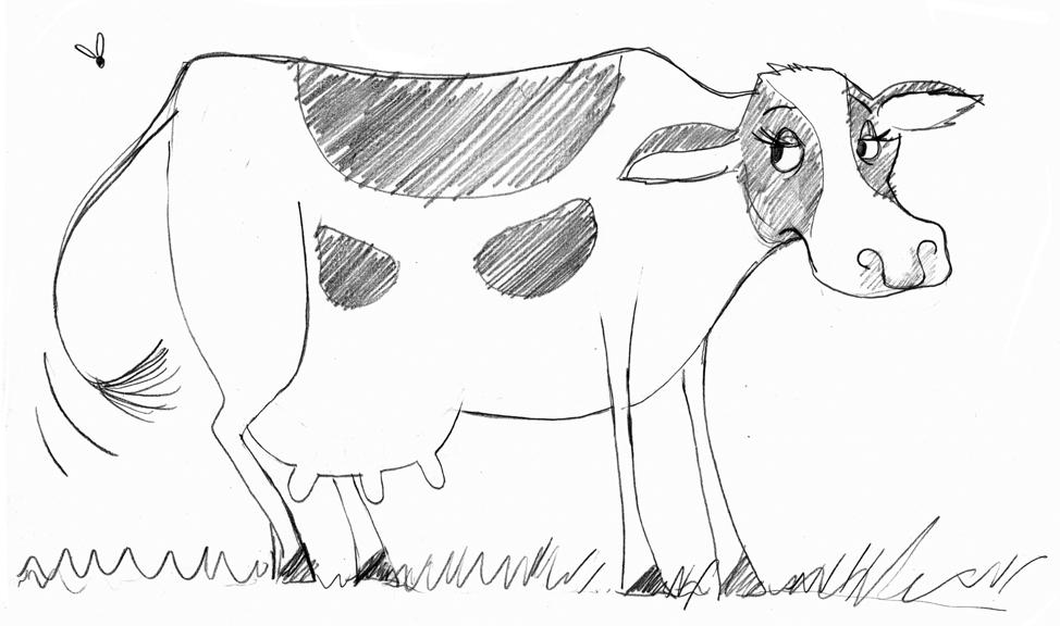 sketch-cow-SS.jpg