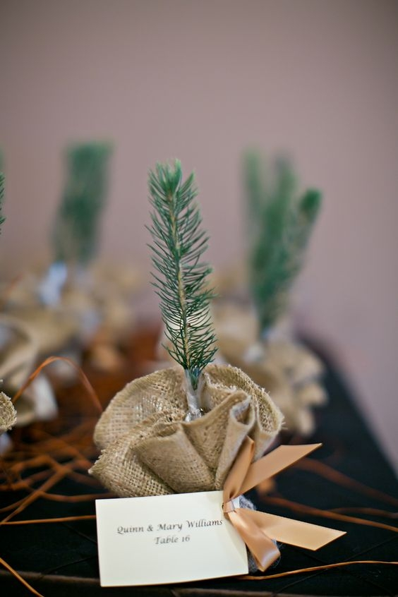 party favor place card 12.jpg