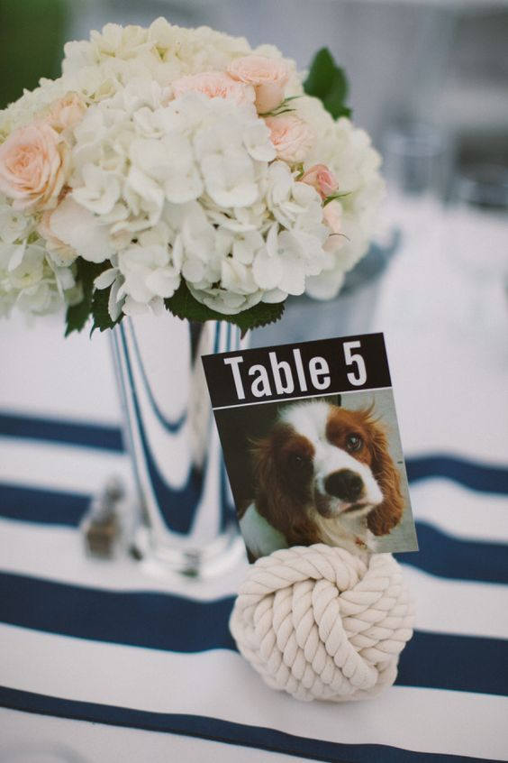 dogs in wedding blog 8.jpg