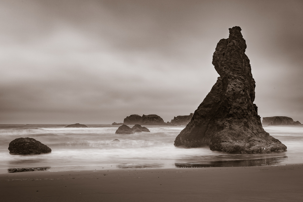 Ocean Warrior.jpg