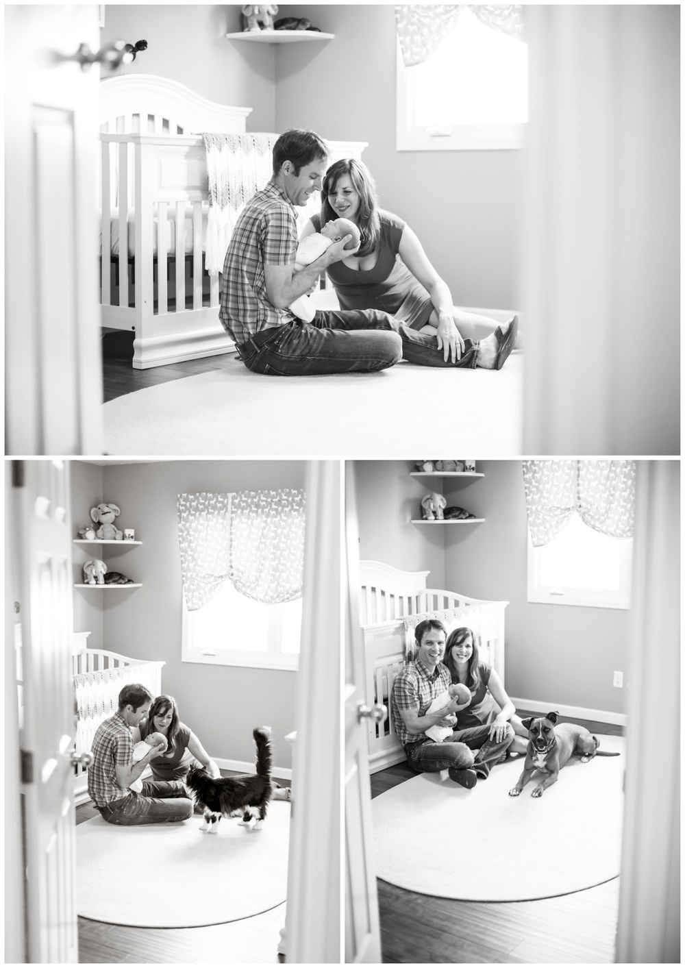 fort collins newborn photography005.jpg