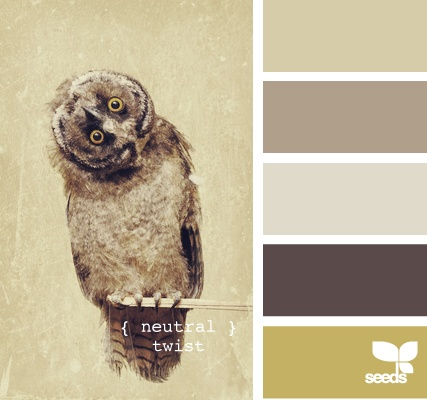 seeds.owl.jpg