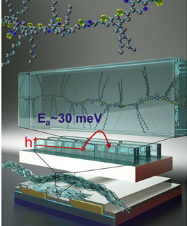 Cartoon drawing of charge transport mechanism in high-mobility OFETs with aligned polymer chains (Nguyen Lab)