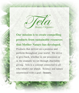 Tela organics touch salon for A mission statement for a beauty salon