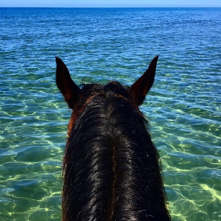 Continuing with our impromptu Turquoise Water theme, today we travel to the shores of  Tuscany to the Parcco Dell'uccellina, Italy. Thanks to Erin Gilmore for making us all envious.   Let's keep it going for these last days of summer and tag #lifebetweentheears if you have Turquoise water shots!