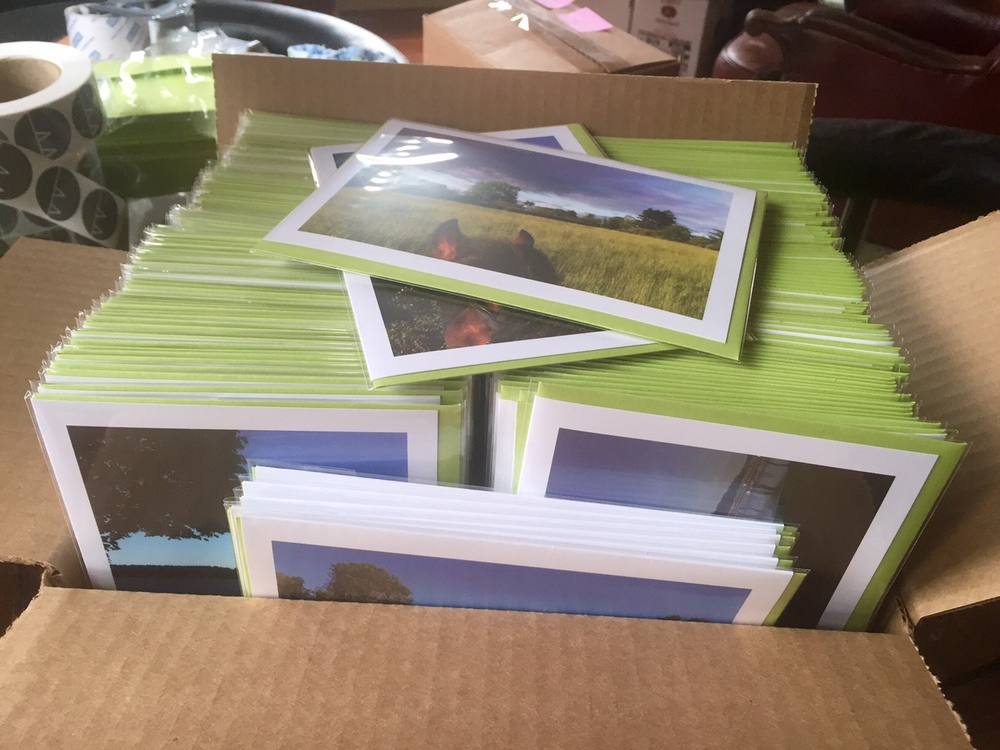 Spent my yesterday afternoon packaging over 250 Life Between the Ears cards for the competitor swag bags at Region 6 Dressage Championships at Devonwood. Will be fun to get them out into the world. Good luck to my friends Erin Peterson, Anne-Lise Dragoy Brooks, Audrey Zehnder, Suzanne Meehan Beaudoin, Kimry Jelen, Shana Blum, Donna Baxter that are riding and/or working, and I look forward to meeting a few more FB friends in person here too! See you in a few weeks!