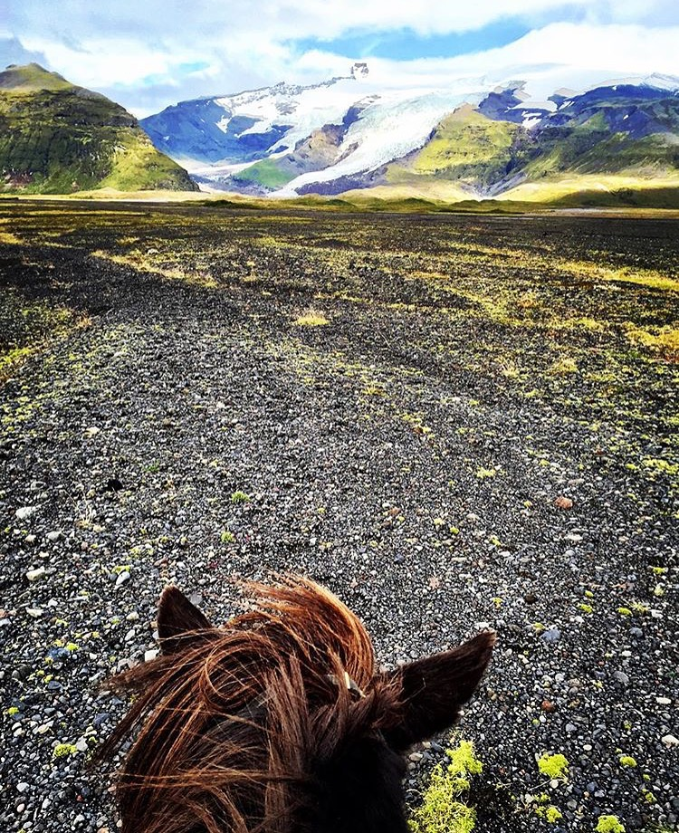 Still dreaming of Iceland and this shows up in my feed with a tag. Thank you 🔷 @heycase86 🔷 for sharing your vacation with us! ....... Tag your photo #lifebeetwentheears for a chance to be featured. Ride On! ^^ ........ #betweentheears #equestrianphotography #equestriantravel #equestrianadventure #vatnajökull #iceland #thankyou #caseydulunwoodson