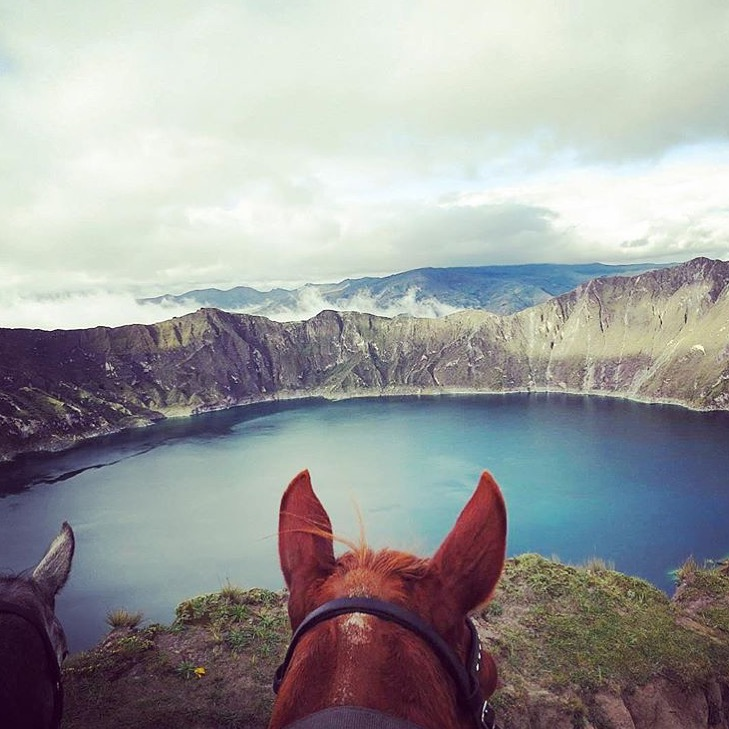 Thanks to riding guides🔷 @farandride 🔷 for this interesting geology lesson. This is not a crater, but rather a 'caldera' formed when part of this dacite volcano collapsed following a catastrophic eruption about 800 years ago. Wow.  ......... Tag your photo #lifebetweentheears for a chance to be featured. Ride On!  ........ #betweentheears ##equestriantravel #equestrianphotography #equestrianadventures #ecuador #andes #southamerica #quilotoa #thankyou #farandride