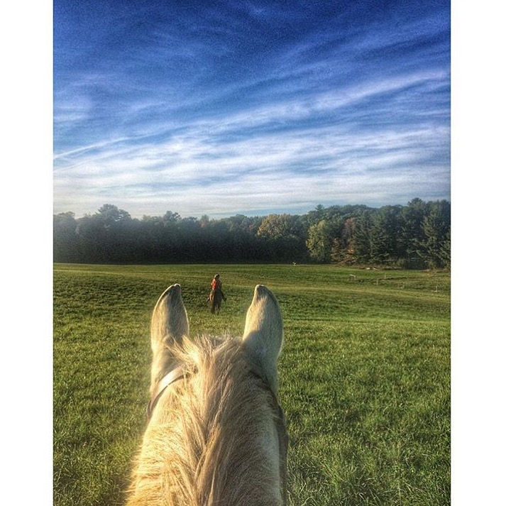 Thanks to 🔷 @bayleyann034 🔷 for another glimpse of her slice in New York.  ....... Tag your photos #lifebetweentheears for a chance to be featured. Ride On! ^^ ......... #betweentheears #upstatenewyork #equestrianlife #equestrianphotography #thankyou #bayley
