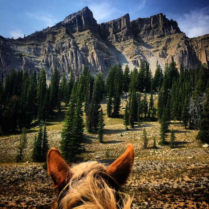 So many spectacular views by 🔷 @alixcritt / @sleepingindianoutfitters 🔷 that I'm going to do a feature blitz of some of my favorites of hers. To kick it off, here's Gros Ventre Wilderness near Jackson Hole and Bondurant. Thanks, Alix! www.sleepingindianoutfitters .......... Tag your photo #lifebetweentheears for a chance to be featured. Ride On! ^^ .......... #betweentheears #equestrianlife #equestriantravel #equestrianadventure #equinephotography #grosventre #bondurant #wyoming #thankyou #slixcrittenden #sleepingindianoutfitters