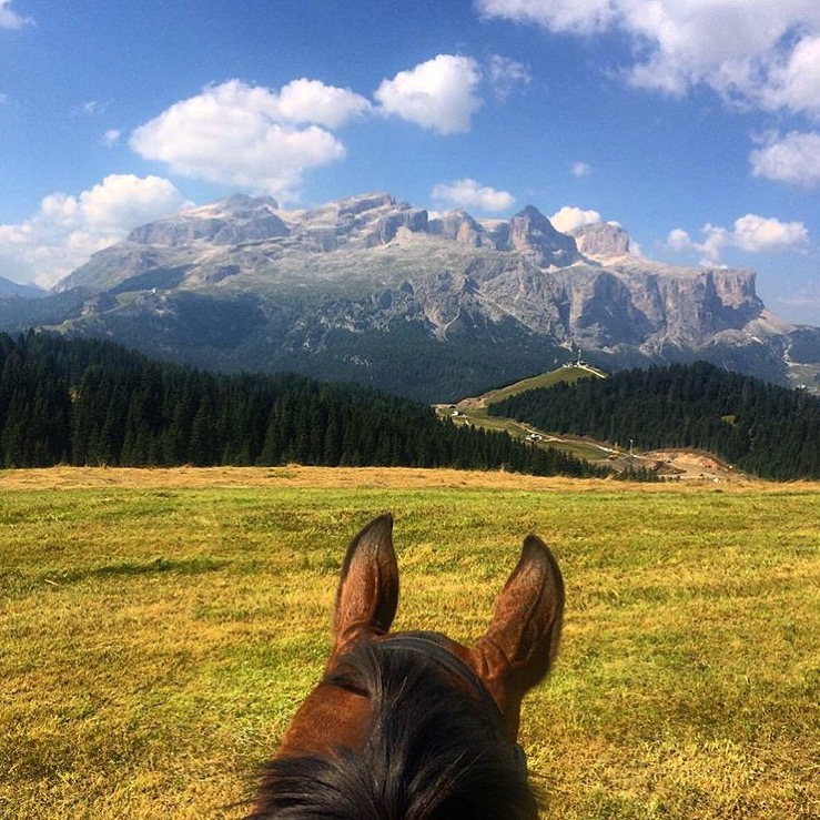 Alta Badia in Northern, Italy. Yes please, in summer OR winter. Thank you 🔷 @shineandride 🔷 !  ......... Tag your photo #lifebetweentheears for a chance to be featured. Ride On! ^^ ......... #equestriantravel #equinephotography #thedolomites #altabadia #italy #thankyou #shineandride